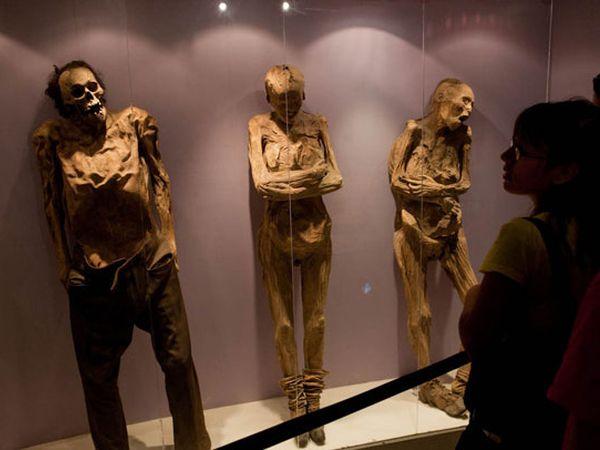 momias Guanajuato