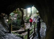 cuevas andia asturias