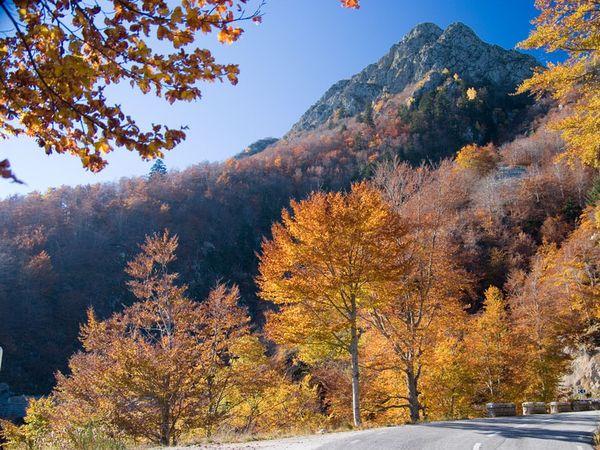 Parque Natural Montseny