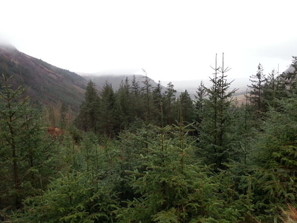 West Highland Way Fort Williams